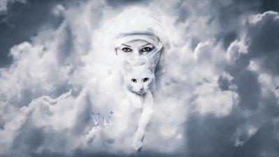 women & cat.jpg
